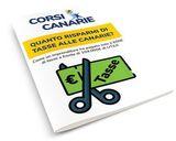 Report FARE IMPRESA ALLE CANARIE